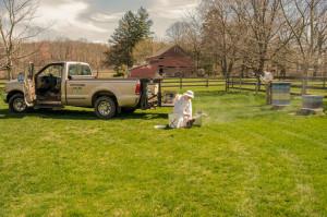 Beginning a yard inspection